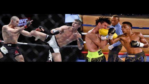 Las MMA y el Boxeo