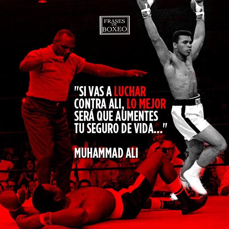 Las Frases De Boxeo Más Motivadoras Fdb Plus